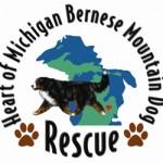 Michigan Berner Rescue