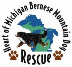 Heart of Michigan Bernese Mountain Dog Rescue